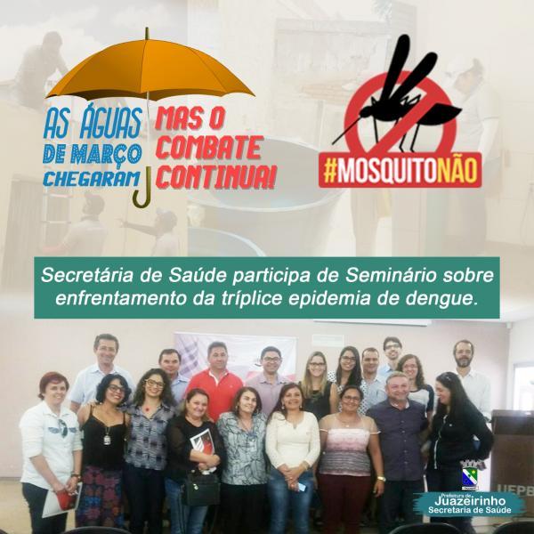 Secretária de Saúde participa de Seminário sobre enfrentamento da tríplice...